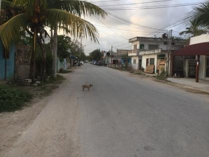 Downtown Tulum